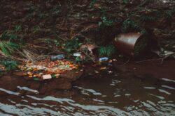 Trash in Water